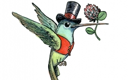 hummingbird_valentine