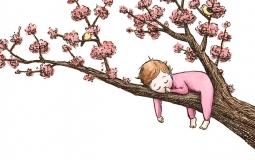 spring-sleeper