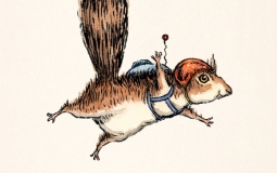 skydiver-squirrel