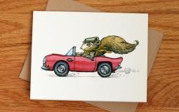 squirrel-car